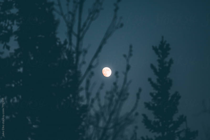 Fairbanks Summer Moon by Jake Elko for Stocksy United