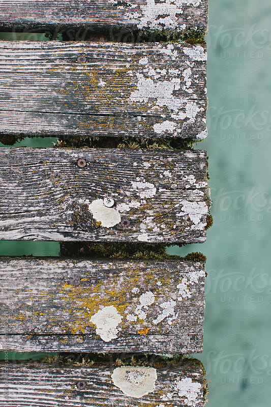 Old weathered wooden planks of a bridge by Amir Kaljikovic for Stocksy United