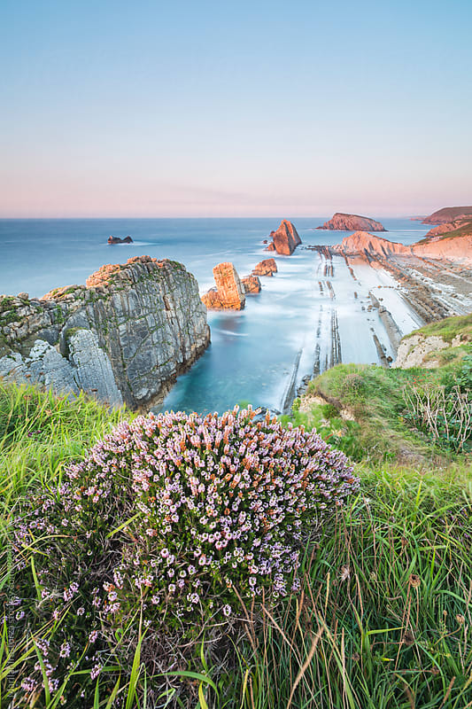Beautiful coastline with wildflowers by Marilar Irastorza for Stocksy United
