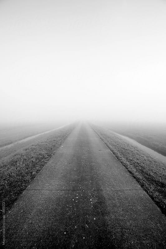 Misty road by Marcel for Stocksy United