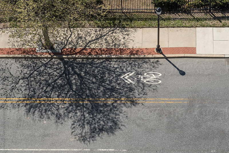 Shadow of a tree falls onto a street by Melanie Kintz for Stocksy United