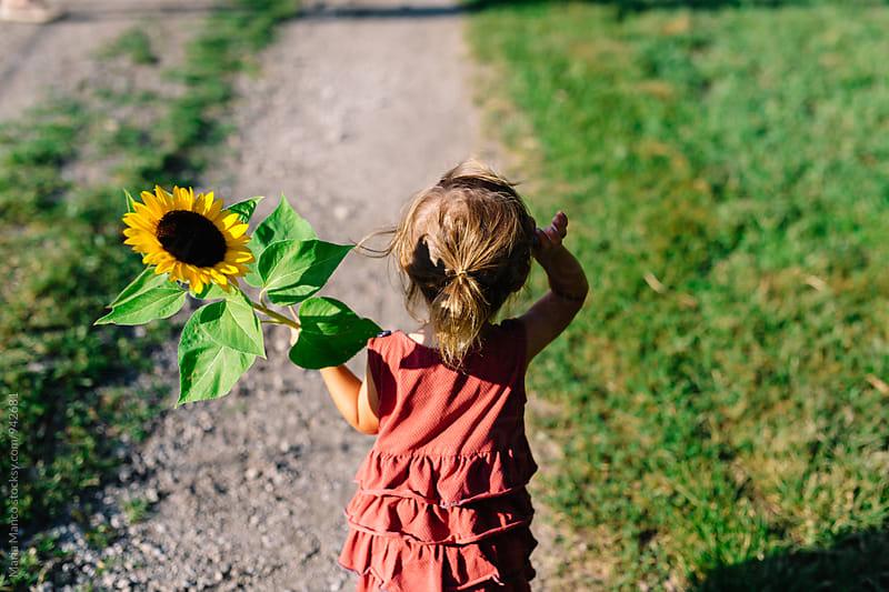 little girl holding sunflower by Maria Manco for Stocksy United
