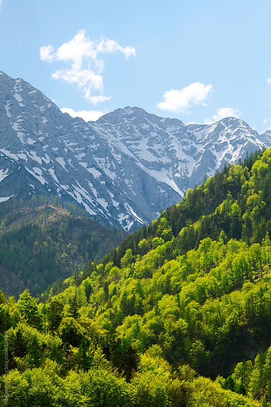 The Alps in spring by Mosuno for Stocksy United