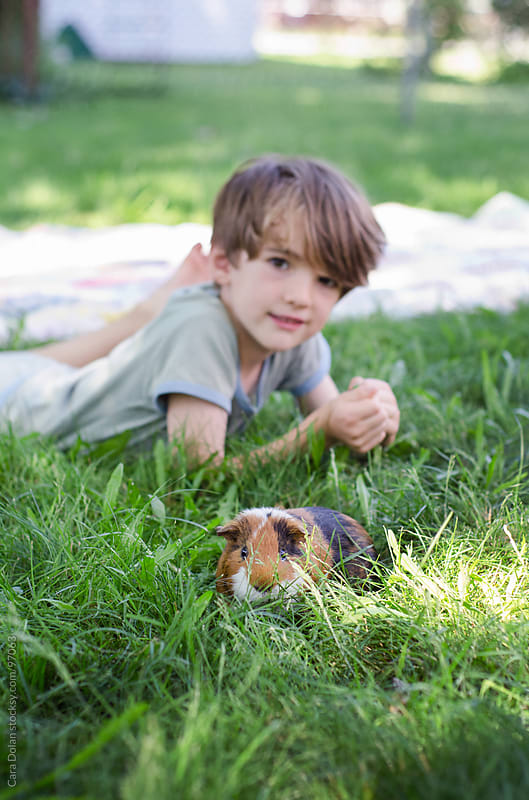 Boy and his pet guinea pig play together in his backyard by Cara Dolan for Stocksy United