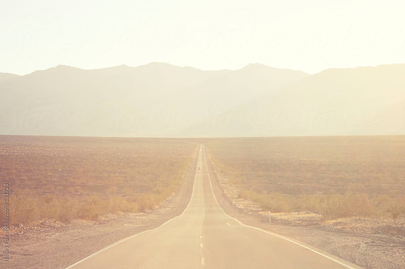 Road into Death Valley by Hillary Fox for Stocksy United