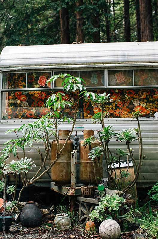 Old camper in the woods surrounded by trees and plants by Carolyn Lagattuta for Stocksy United