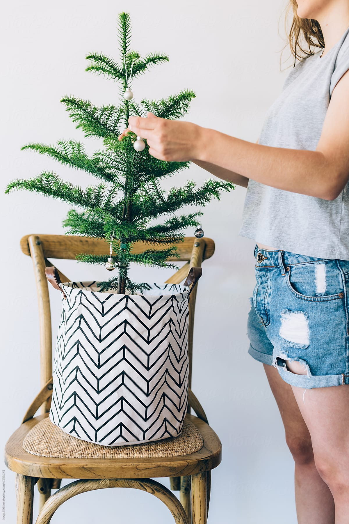 Teenage Girl Decorating Small Norfolk Island Pine Christmas Tree In ...