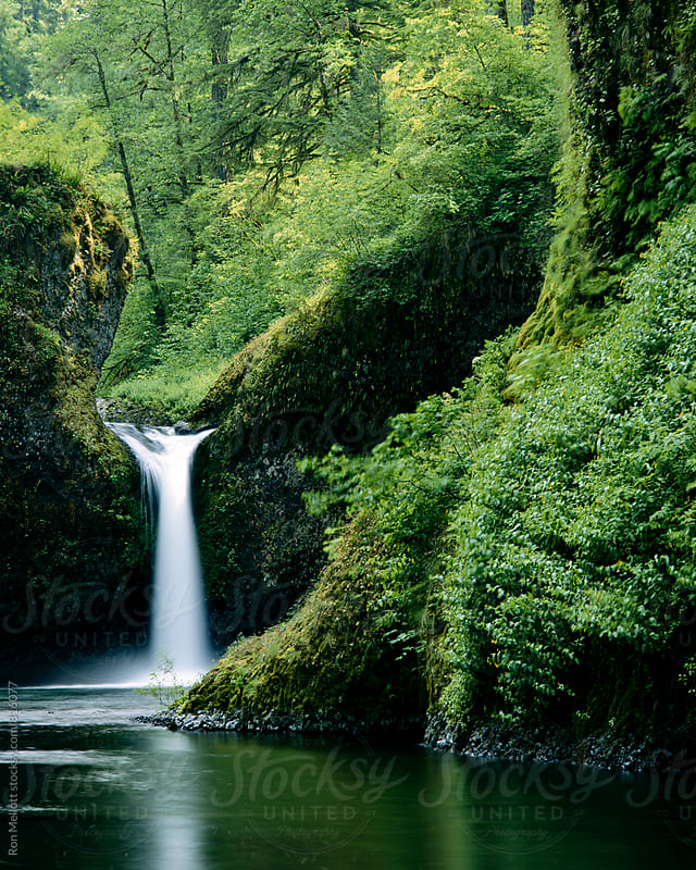 Punchbowl Falls in the old growth forest of the Columbia River Gorge, Oregon by Ron Mellott for Stocksy United