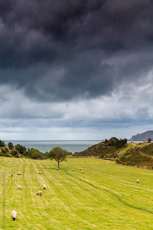 Irish Landscape by Marilar Irastorza for Stocksy United