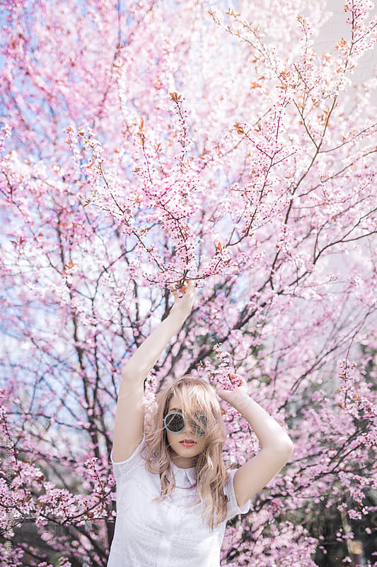 Young woman in a cherry blossom tree by Maja Topcagic for Stocksy United