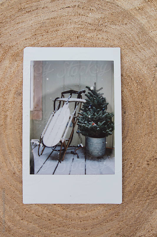 polaroid image of old sled and Christmas tree on porch by Tana Teel for Stocksy United