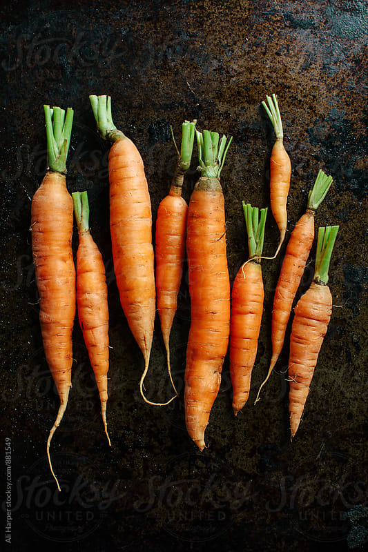 Organic carrots with short cut tops by Ali Harper for Stocksy United