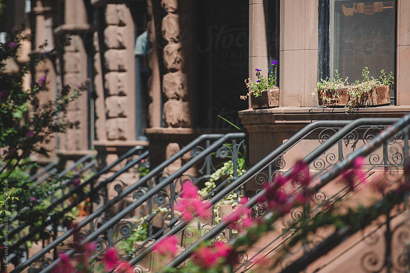 Brooklyn brownstones and potted plants by Lauren Naefe for Stocksy United