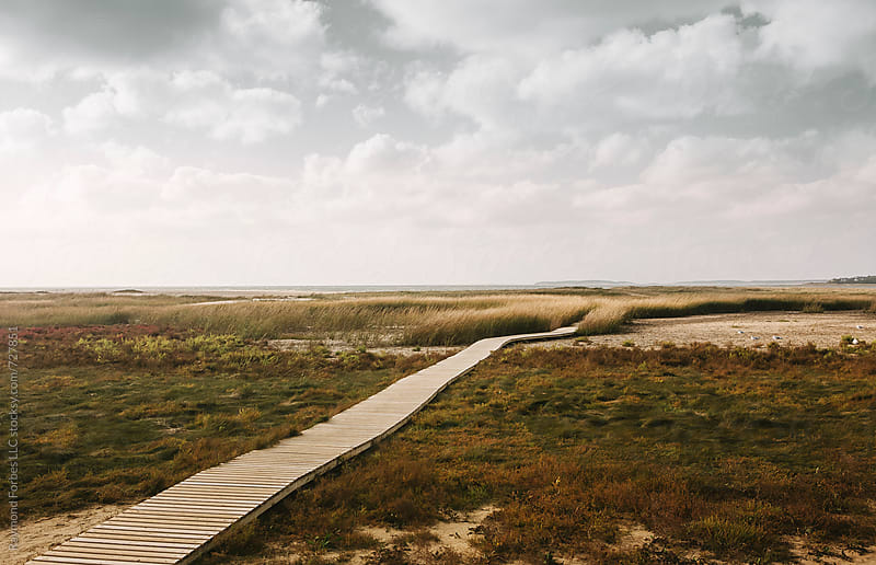 Boardwalk to Beach Cape Cod Massachusetts by Raymond Forbes LLC for Stocksy United