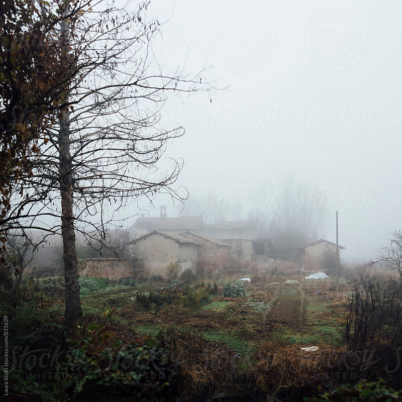 Foggy sight of ancient abandoned farm and vegetable garden in northern Italy by Laura Stolfi for Stocksy United