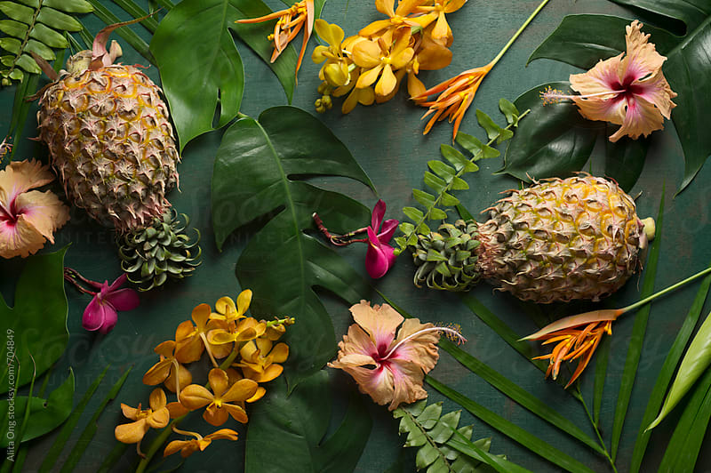 Tropical still life by Alita Ong for Stocksy United