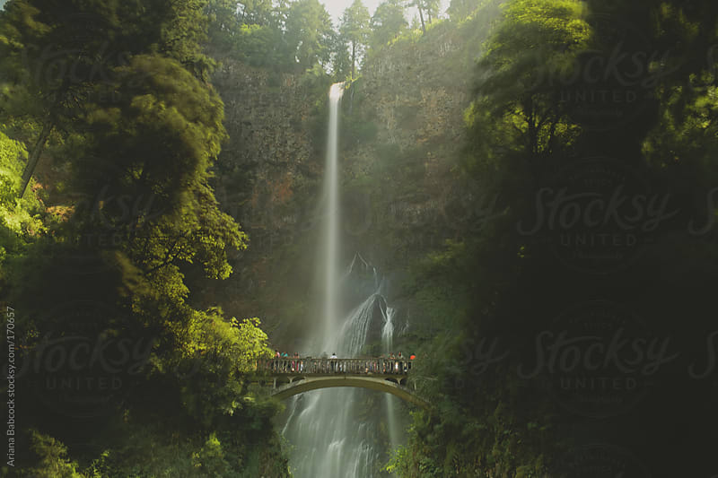 Multnomah Falls by Ariana Babcock for Stocksy United
