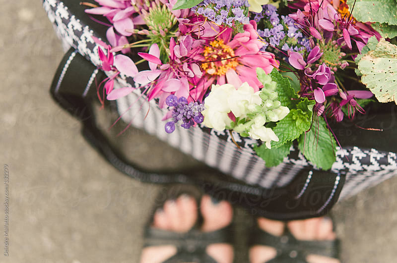 flowers from the farmer's market by Deirdre Malfatto for Stocksy United