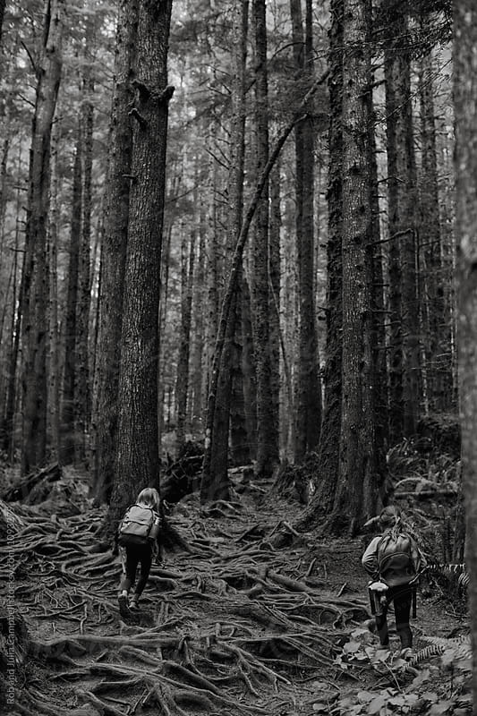 Young caucasian kids hiking through forest together by Rob and Julia Campbell for Stocksy United