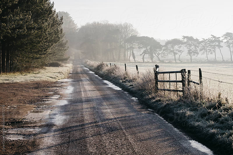 Remote frozen country road a t sunrise. Norfolk, UK. by Liam Grant for Stocksy United