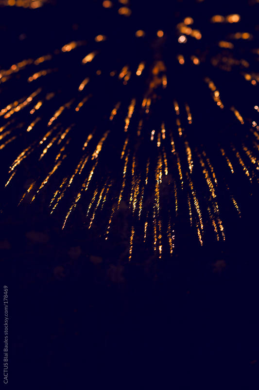 Fireworks of 4th july by CACTUS Blai Baules for Stocksy United