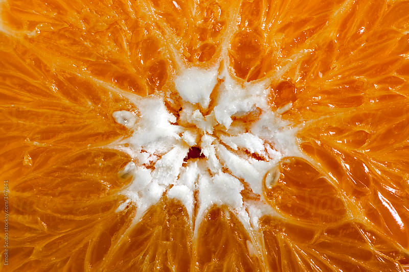 Close up of sliced orange by Emoke Szabo for Stocksy United