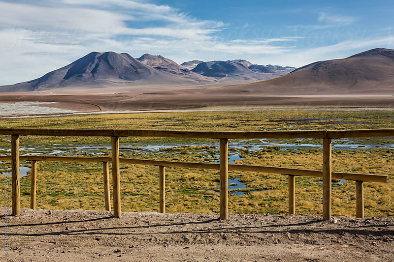 Adventure in Atacama desert, north Chile. by Mauro Grigollo for Stocksy United