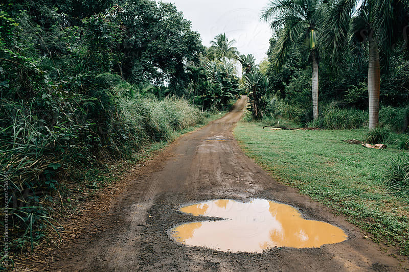 Muddy tropical road by Christian Gideon for Stocksy United