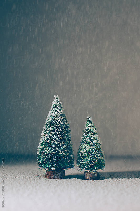 Still life of two christmas tree with snowflakes by