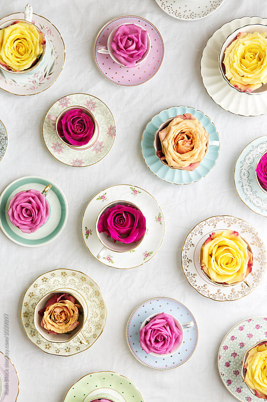 Vintage teacups and roses by Ruth Black for Stocksy United