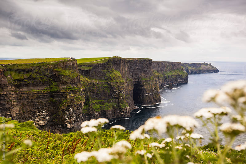 Cliffs of Moher, Ireland by Mima Foto for Stocksy United