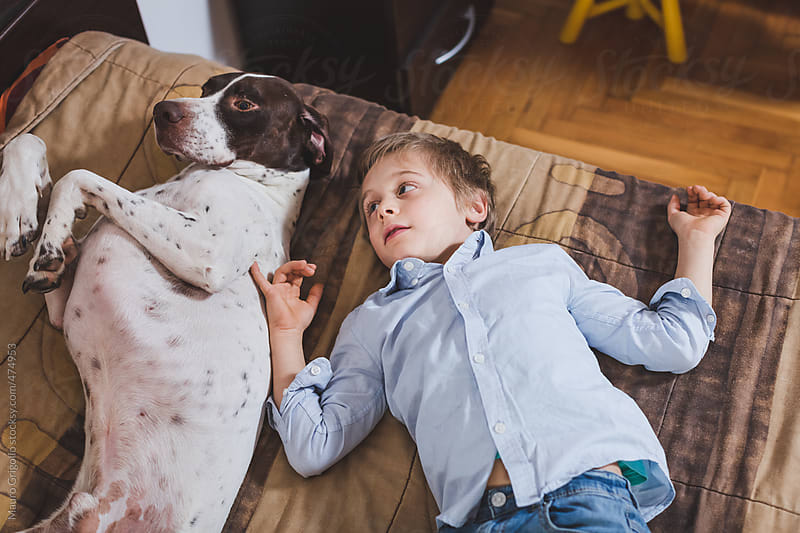 Young boy lying on bed with his dog by Mauro Grigollo for Stocksy United