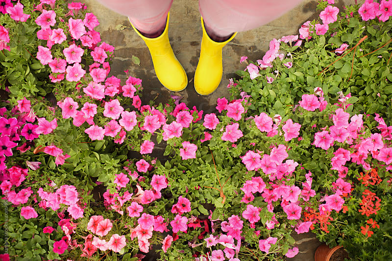 Flowers and Boots by Lumina for Stocksy United