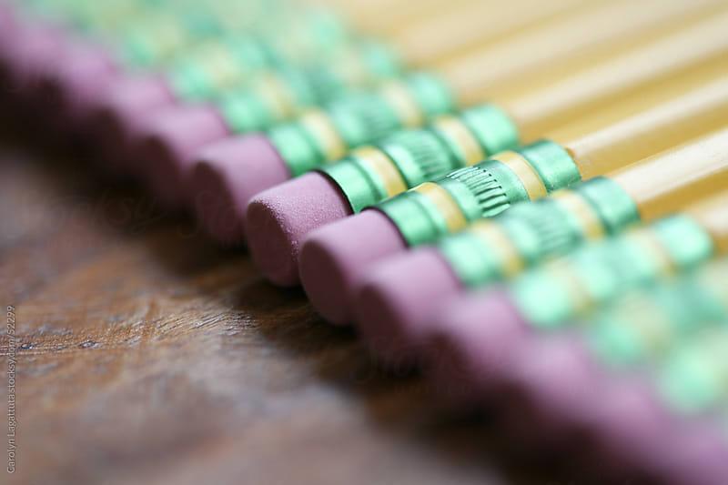 Line of  many new pencils by Carolyn Lagattuta for Stocksy United
