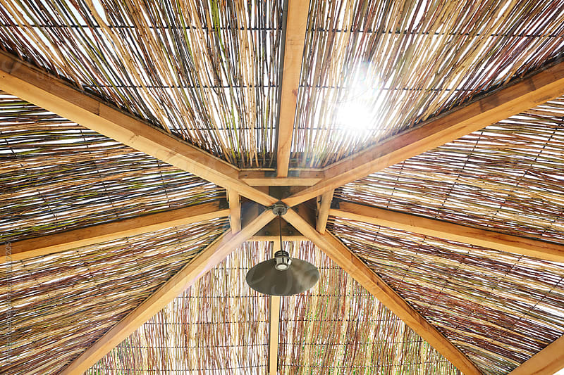 Palapa Ceiling with sun shining through by Trinette Reed for Stocksy United