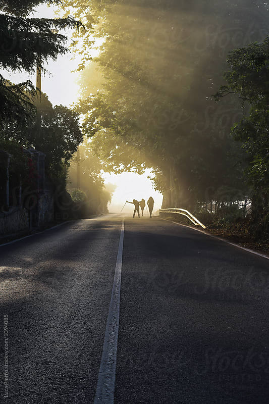 Three pilgrims walking in the morning light on the Camino de Santiago by Luca Pierro for Stocksy United