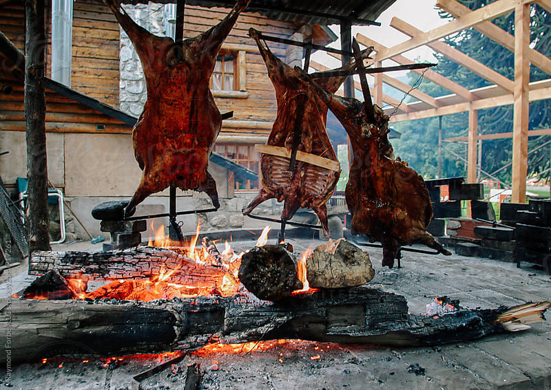 Lamb cooking on the Traditional Parrilla by Raymond Forbes LLC for Stocksy United