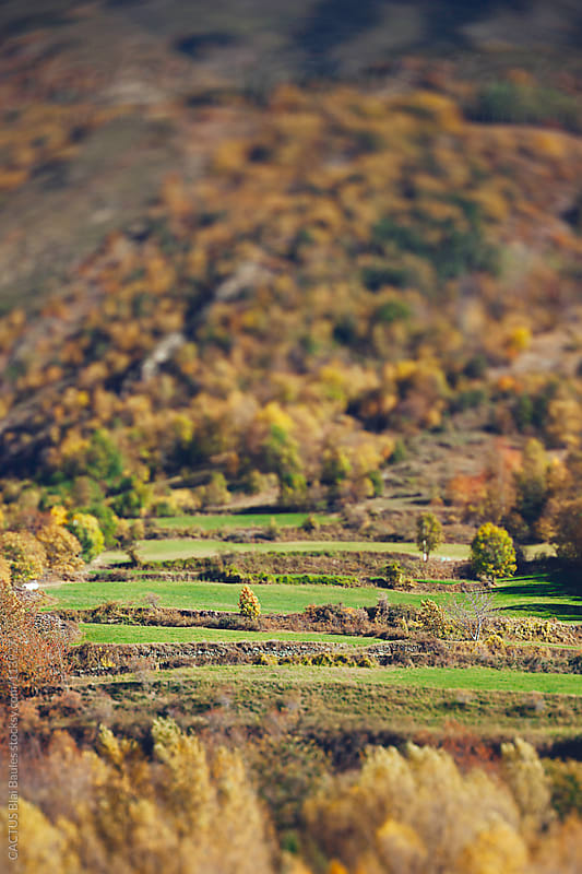 Pyrenees  landscape. by CACTUS Blai Baules for Stocksy United