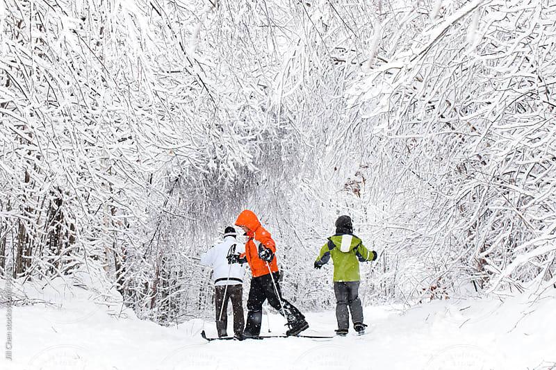 Skiing in Winter Wonderland by Jill Chen for Stocksy United