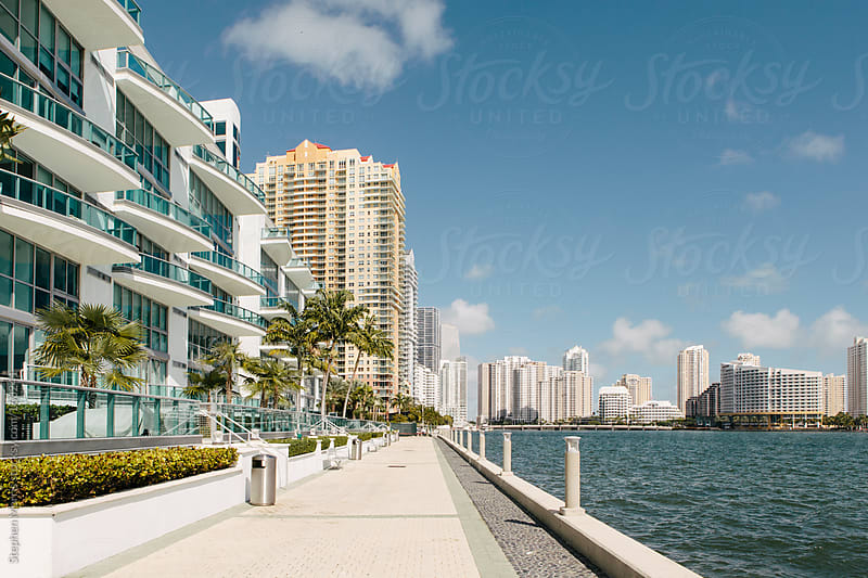 Miami Waterfront Condos by Stephen Morris for Stocksy United