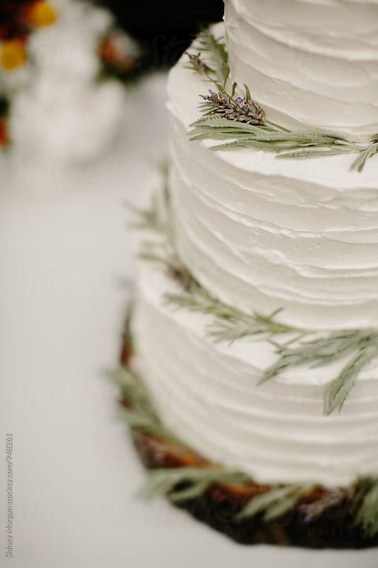 Wedding Cake with Sage by Sidney Morgan for Stocksy United