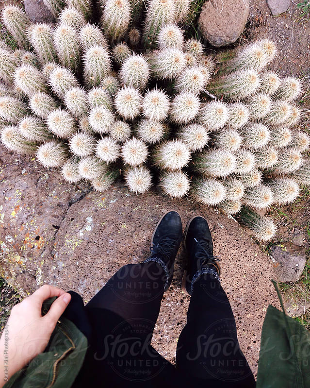 Feet standing over cluster of cactus by Daniel Kim Photography for Stocksy United