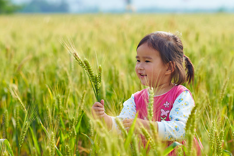 lovely little asian girl outdoor in the wheat field by Bo Bo for Stocksy United