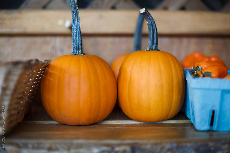Small pumpkins sit on an outdoor shelf for sale at a country sto by Holly Clark for Stocksy United