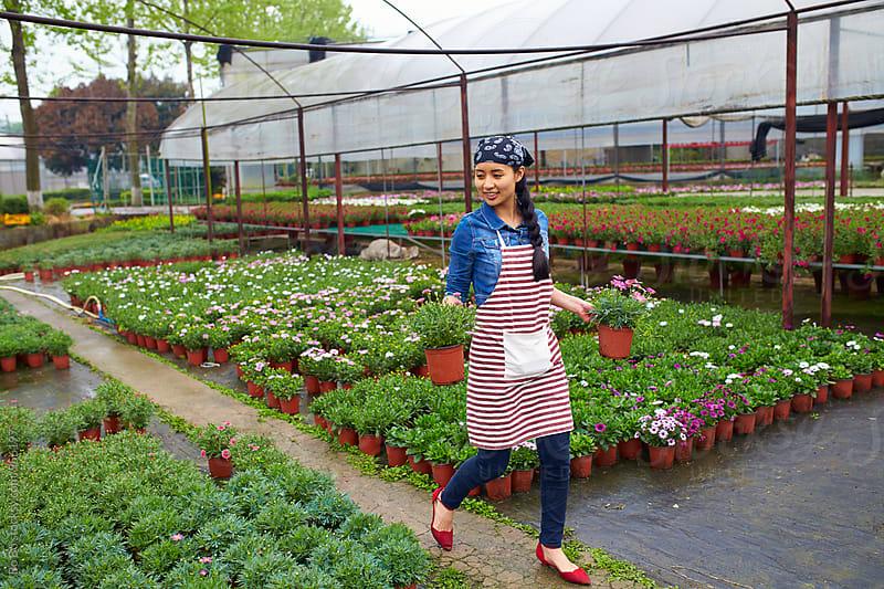 female florist working in the nursery by Bo Bo for Stocksy United