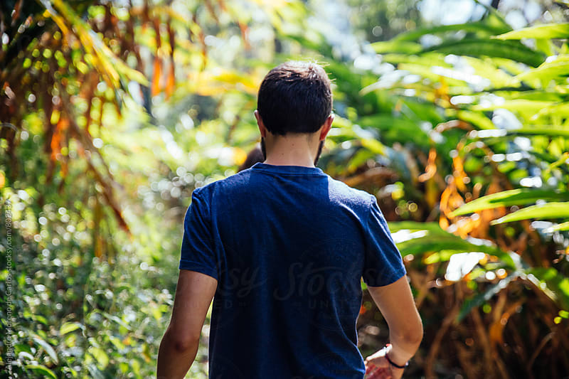 Back view of young man traveler trekking through tropical countryside by Alejandro Moreno de Carlos for Stocksy United
