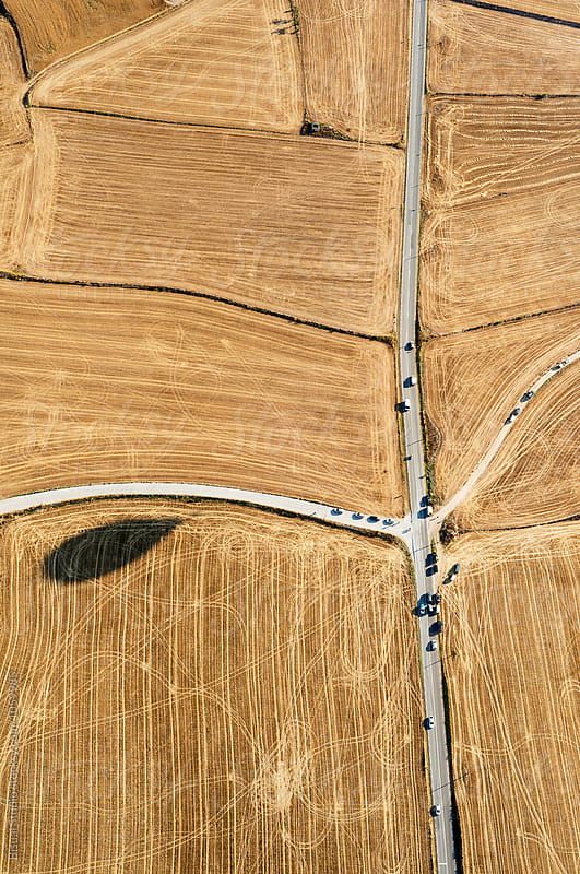 Balloon shadow over a wheat field in Catalonia, Spain by Bisual Studio for Stocksy United