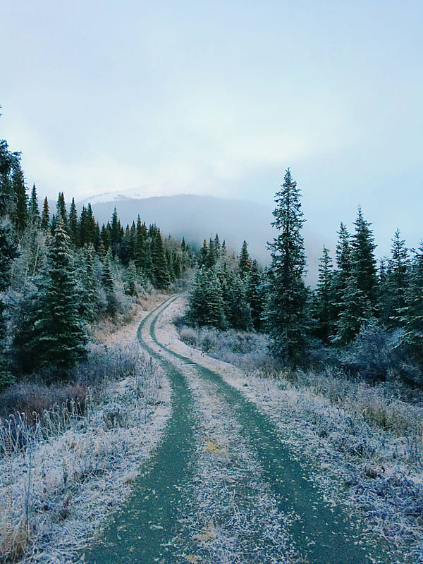 Moose Pass, AK. by Jovell Rennie for Stocksy United