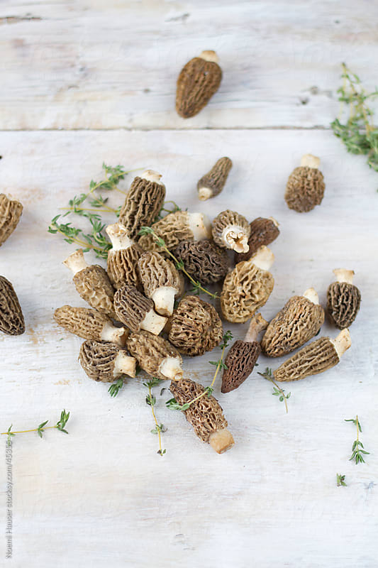 Fresh morels with thyme  by Noemi Hauser for Stocksy United