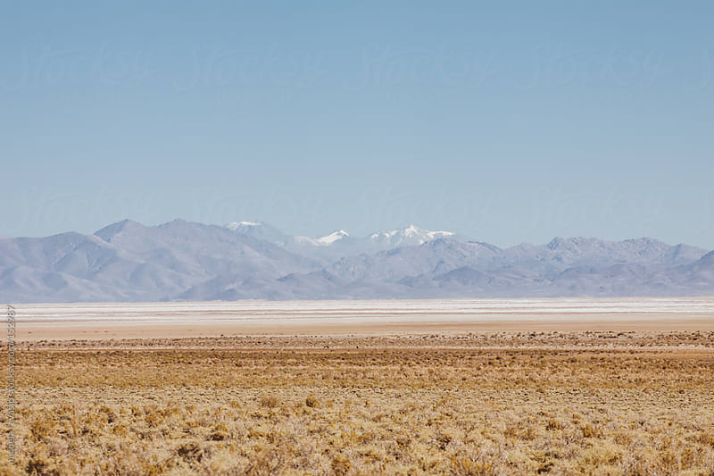 Desert landscape, northern Argentina by michela ravasio for Stocksy United
